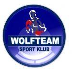 Спортивный клуб «WOLFTEAM». Бокс. Кикбоксинг. Тайский Бокс. MMA. Грепллинг.