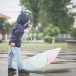Советы — Как вести себя и что делать при сильном ветре?