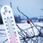 Куда пристроить бездомных в Бишкеке во время холодов? (адреса и контакты)