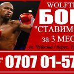 Спортивный клуб «WolfTeam». Бокс! «Ставим Руки» за 3 месяца