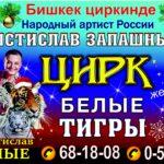 С 22 декабря по 20 января в Бишкеке шоу-программа «Великий русский цирк»