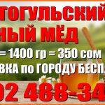 Продаю Токтогульский горный мёд.