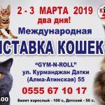 Международная выставка кошек! 2-3 марта 2019 года