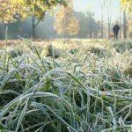 В Кыргызстане будут заморозки! Штормовое предупреждение