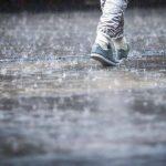 Временами дождь и сильный ветер — погода в Бишкеке 19 апреля