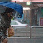 Дожди и сильный ветер — прогноз погоды по Кыргызстану до 19 апреля