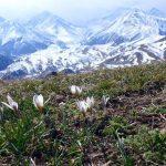 Дождь со снегом и сильный ветер — прогноз погоды по Кыргызстану на 25 апреля