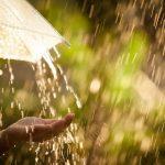 Днем интенсивные осадки — прогноз погоды по Кыргызстану на 8 июня