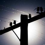 В связи с ремонтными работами, информируем! Возможны отключения света  на 37 отрезках улиц Бишкека — 2 июля