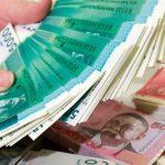 Не взлетят ли цены из-за рекордного объема сомов — ответ экспертов