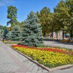 Кыргызгидромет сообщил, когда потеплеет в Бишкеке. Прогноз погоды