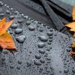 Дожди в четырех областях — прогноз погоды по Кыргызстану на 31 октября
