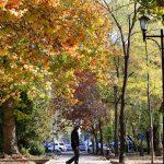 Понижение температуры воздуха в Бишкеке. Прогноз погоды от Кыргызгидромета