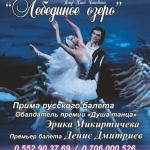 Лебединое озеро. Звезды России