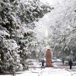 Мороз, снег и сильный ветер — прогноз погоды по Кыргызстану на 23 декабря