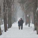 Без осадков, но туман — прогноз погоды по Кыргызстану на 25 декабря