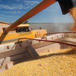 Кыргызстан хочет запретить вывоз своей муки и пшеницы. В чем причины?