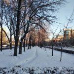 Дождь и снег — прогноз погоды по Кыргызстану на 3 января