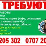 Срочно требуются опытные торговые агенты и экспедиторы г. Бишкек и регионы