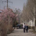 Днем местами дождь — прогноз погоды по Кыргызстану на 3 марта