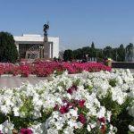 Тепло и без осадков — прогноз погоды по Кыргызстану на 11 мая