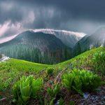 В горах дожди — прогноз погоды по Кыргызстану на 21 мая