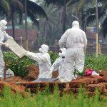 ВОЗ предупредила об угрозе новой пандемии из-за вируса Nipah